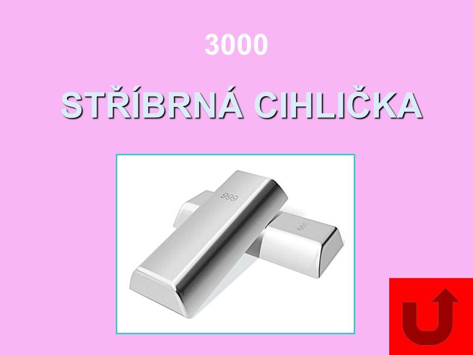 3000 STŘÍBRNÁ CIHLIČKA