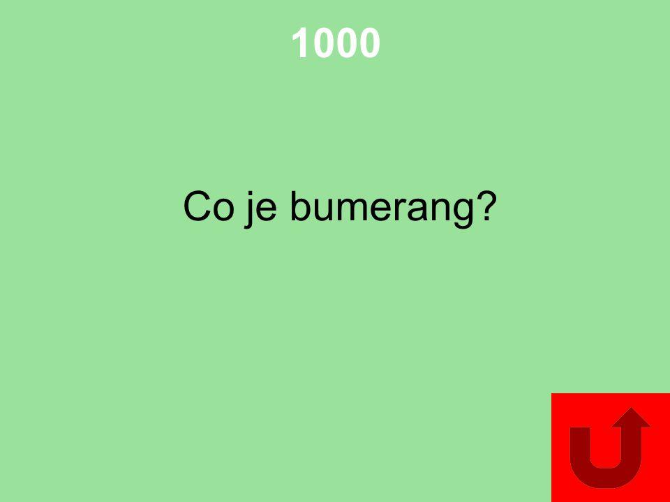 1000 Co je bumerang?