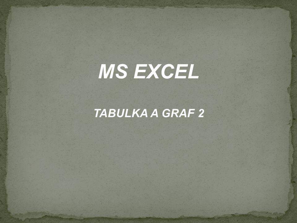 MS EXCEL TABULKA A GRAF 2