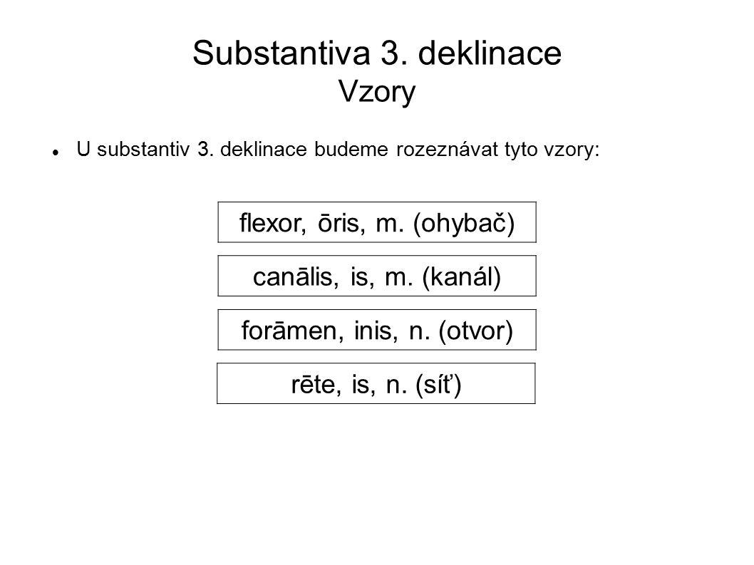 Substantiva 3.deklinace Vzory U substantiv 3.