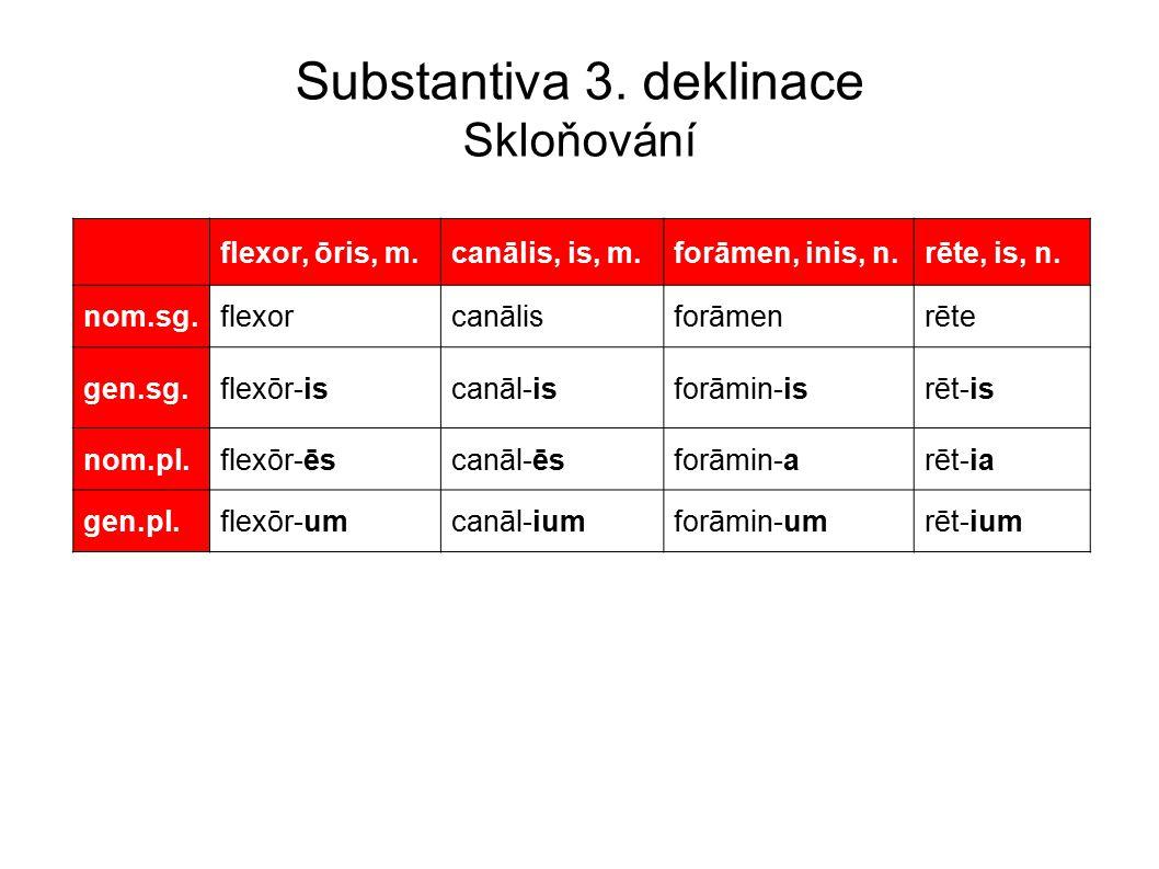 Substantiva 3.deklinace Skloňování flexor, ōris, m.canālis, is, m.forāmen, inis, n.rēte, is, n.
