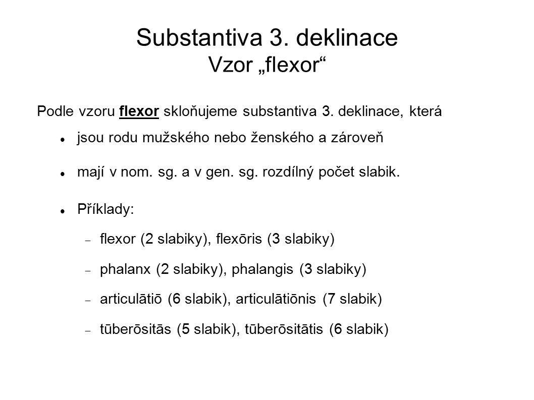 "Substantiva 3.deklinace Vzor ""flexor Podle vzoru flexor skloňujeme substantiva 3."
