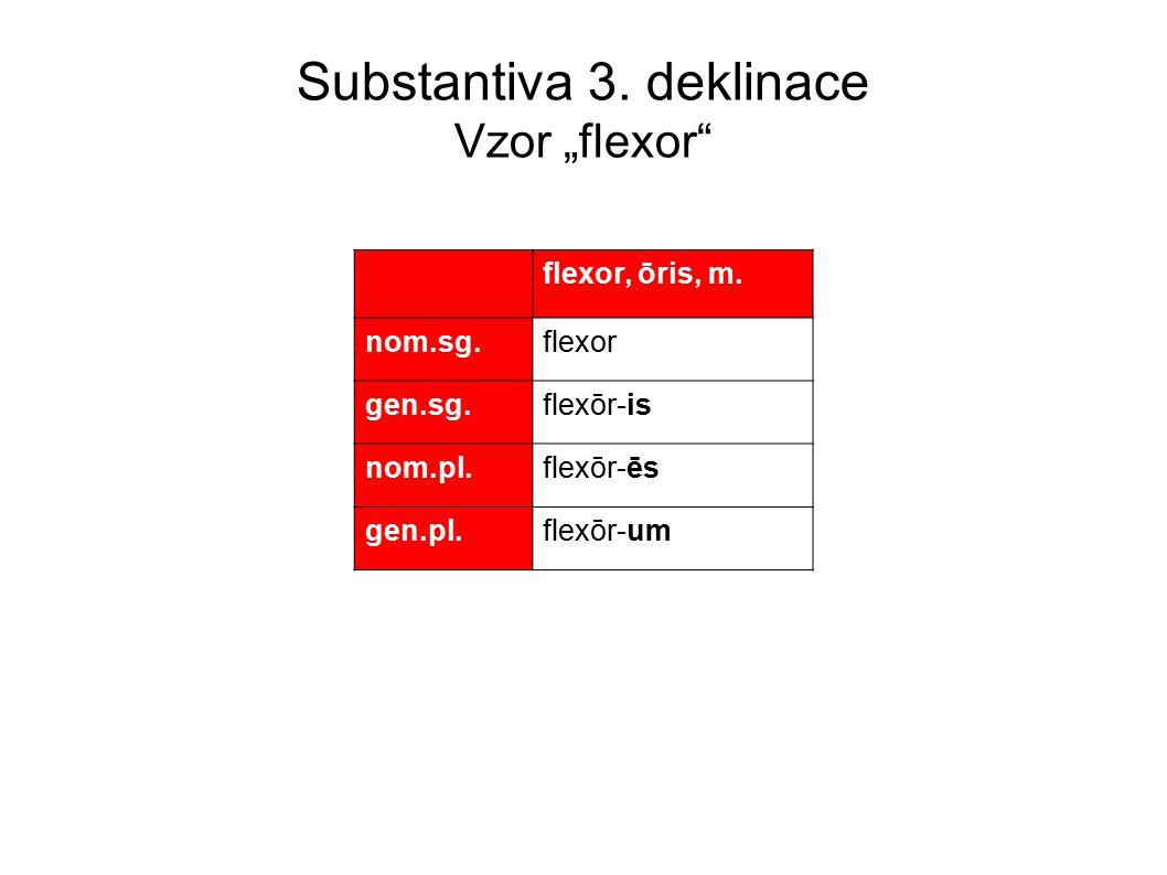 """Substantiva 3.deklinace Vzor """"flexor flexor, ōris, m."""