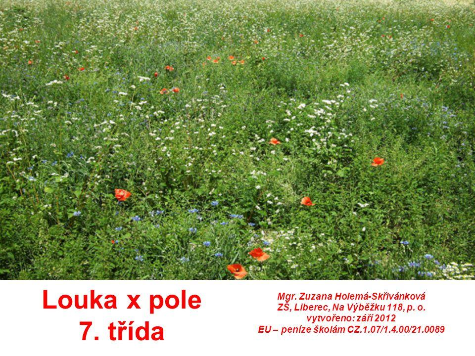Louka x pole 7. třída Mgr. Zuzana Holemá-Skřivánková ZŠ, Liberec, Na Výběžku 118, p. o. vytvořeno: září 2012 EU – peníze školám CZ.1.07/1.4.00/21.0089