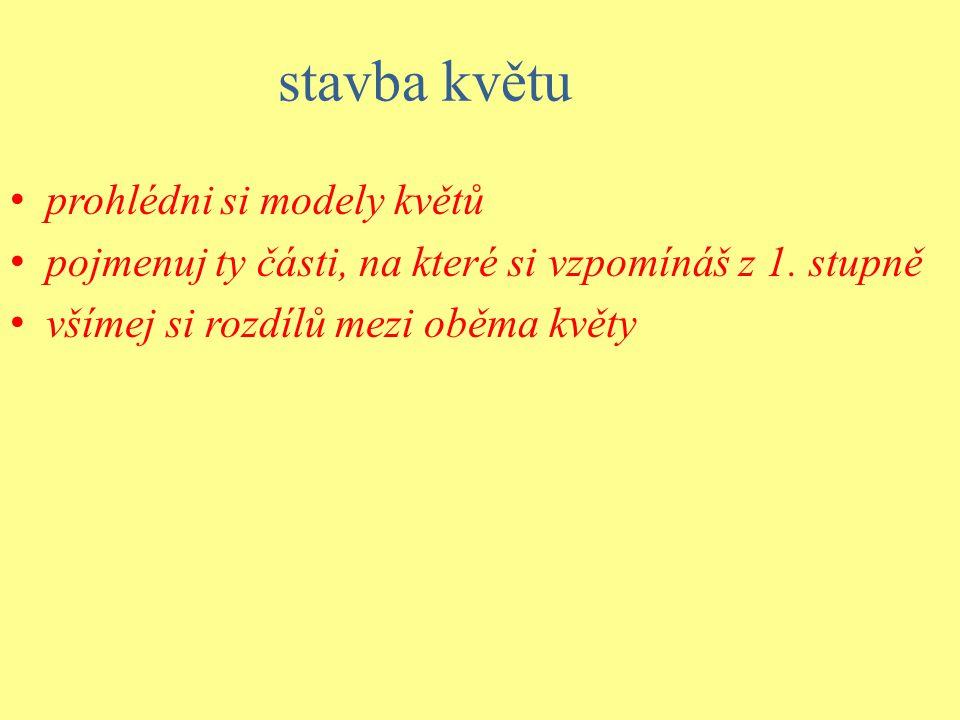 Květ -k pohlavnímu rozmnožování...obr.str.