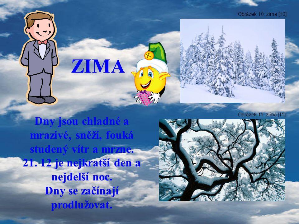 ZIMA Dny jsou chladné a mrazivé, sněží, fouká studený vítr a mrzne. 21. 12 je nejkratší den a nejdelší noc. Dny se začínají prodlužovat. Obrázek 10: z