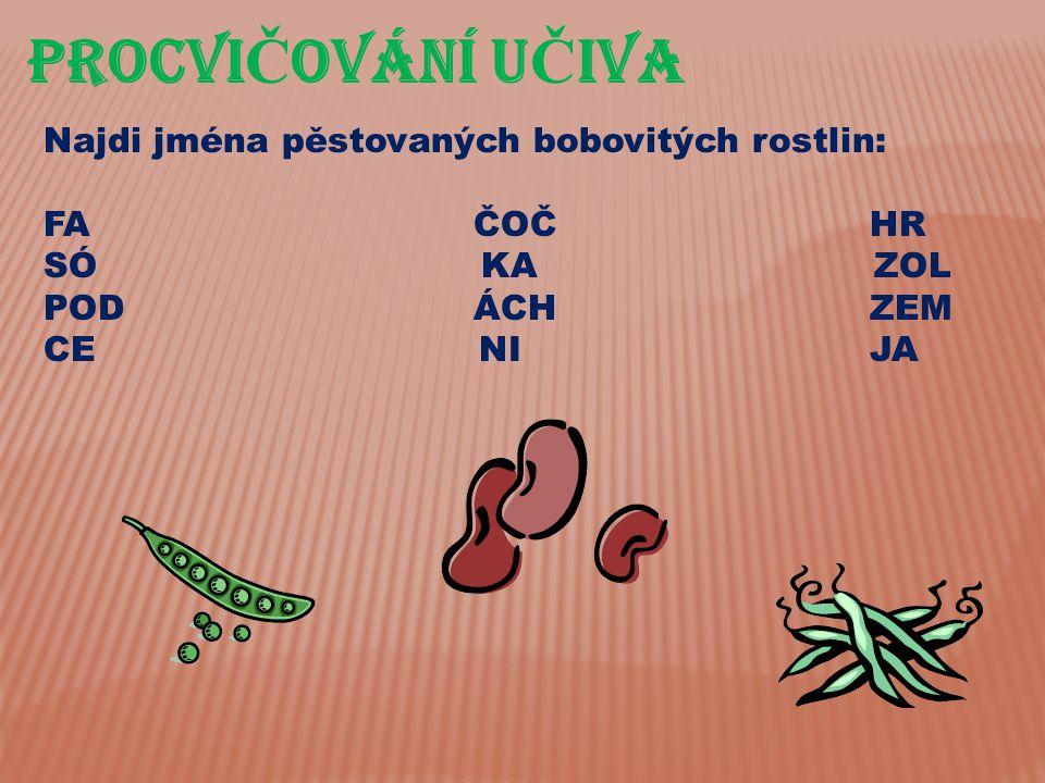 PROCVI Č OVÁnÍ U Č IVA Najdi jména pěstovaných bobovitých rostlin: FA ČOČ HR SÓ KA ZOL POD ÁCH ZEM CE NI JA