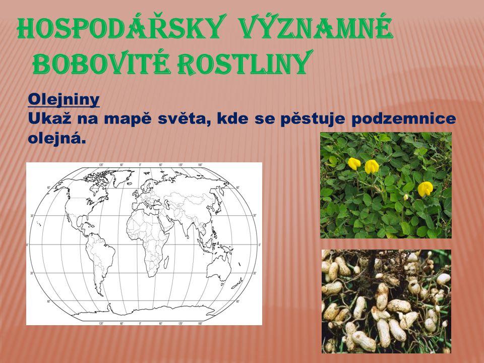 Hospodá Ř sky významné bobovité rostliny Olejniny Ukaž na mapě světa, kde se pěstuje podzemnice olejná.