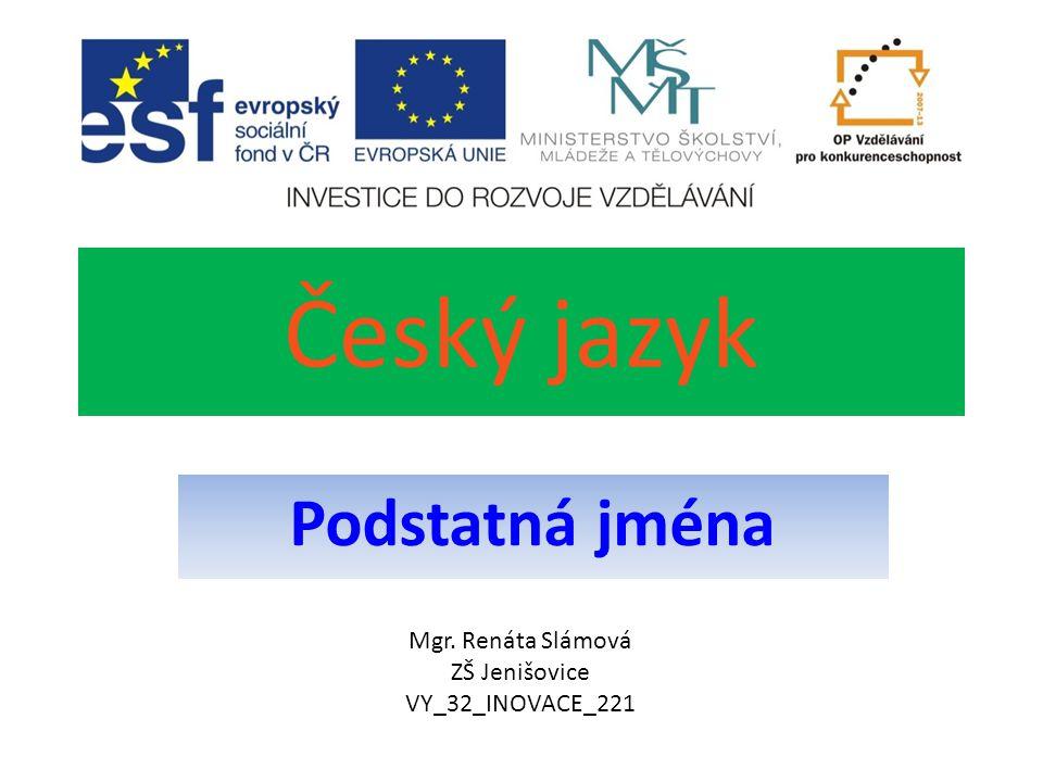 Český jazyk Podstatná jména Mgr. Renáta Slámová ZŠ Jenišovice VY_32_INOVACE_221