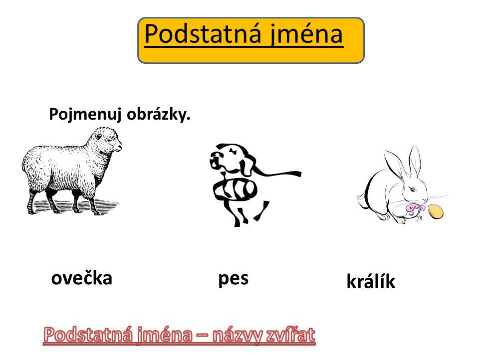Podstatná jména Pojmenuj obrázky. ovečkapes králík