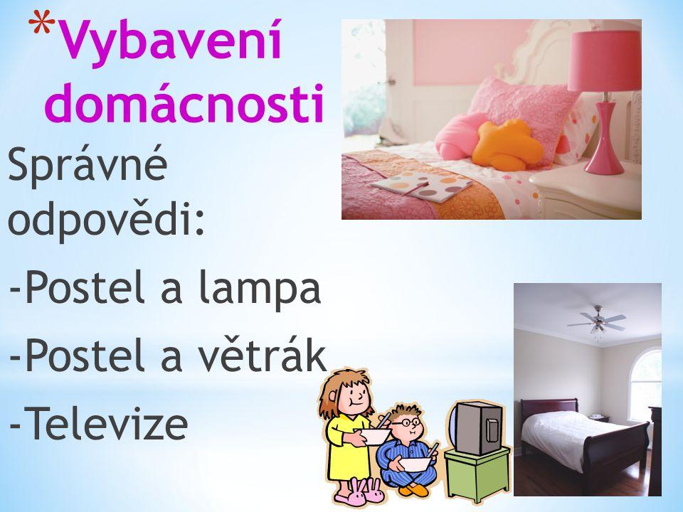 * Vybavení domácnosti Správné odpovědi: -Postel a lampa -Postel a větrák -Televize