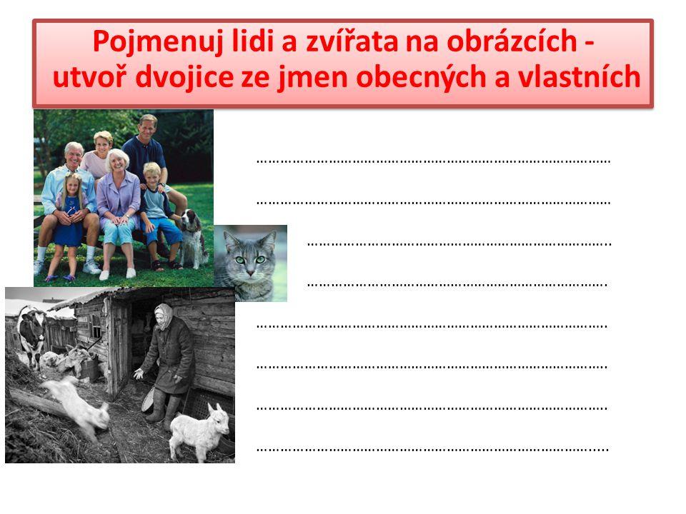 Pojmenuj lidi a zvířata na obrázcích - utvoř dvojice ze jmen obecných a vlastních ……………………………………………………………………………… …………………………………………………………………..