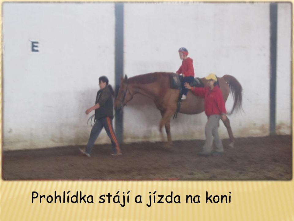 Prohlídka stájí a jízda na koni