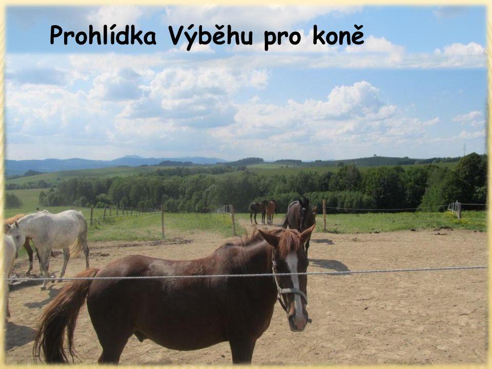 Prohlídka Výběhu pro koně