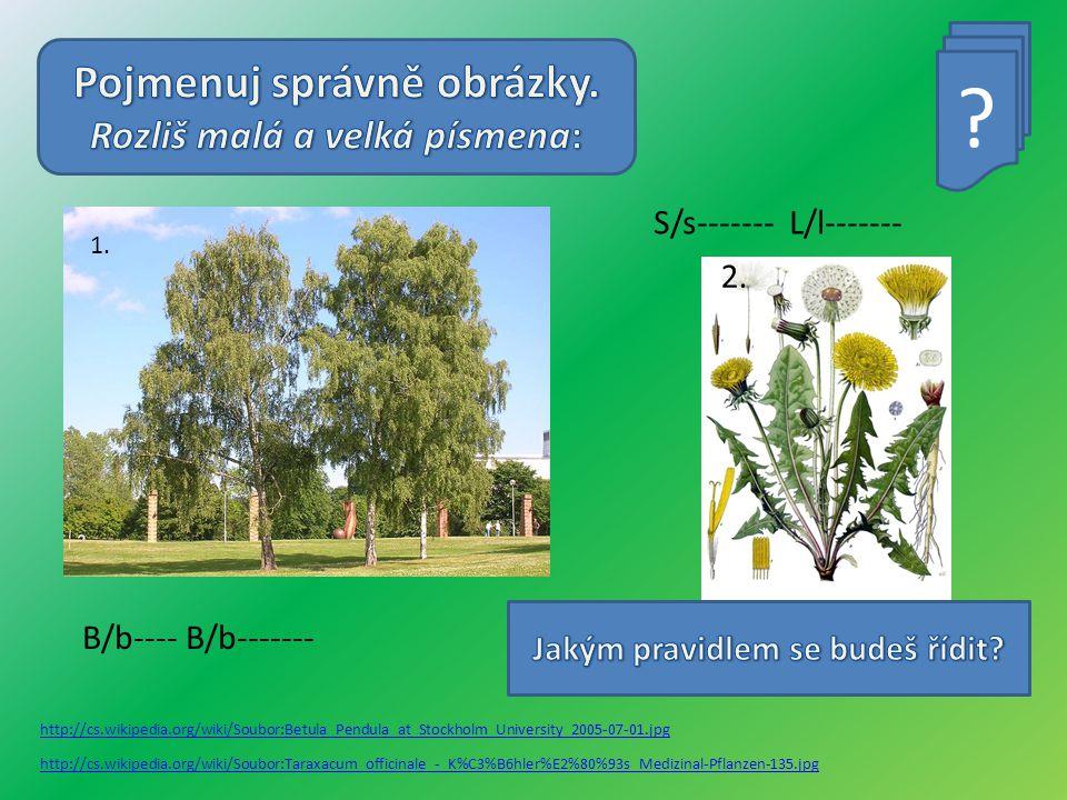 http://cs.wikipedia.org/wiki/Soubor:Betula_Pendula_at_Stockholm_University_2005-07-01.jpg http://cs.wikipedia.org/wiki/Soubor:Taraxacum_officinale_-_K%C3%B6hler%E2%80%93s_Medizinal-Pflanzen-135.jpg .
