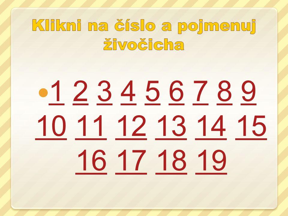 1 2 3 4 5 6 7 8 9 10 11 12 13 14 15 16 17 18 19 123456789 101112131415 16171819