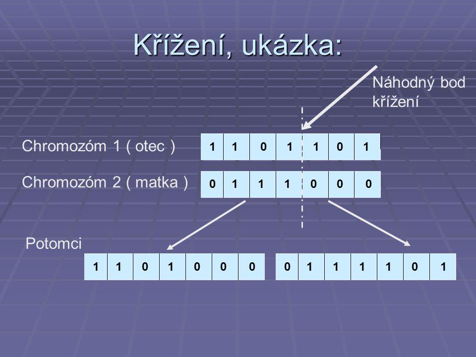 Křížení, ukázka: 1 11 011101 1110000 Chromozóm 1 ( otec ) Chromozóm 2 ( matka ) Náhodný bod křížení 11101101010001 Potomci