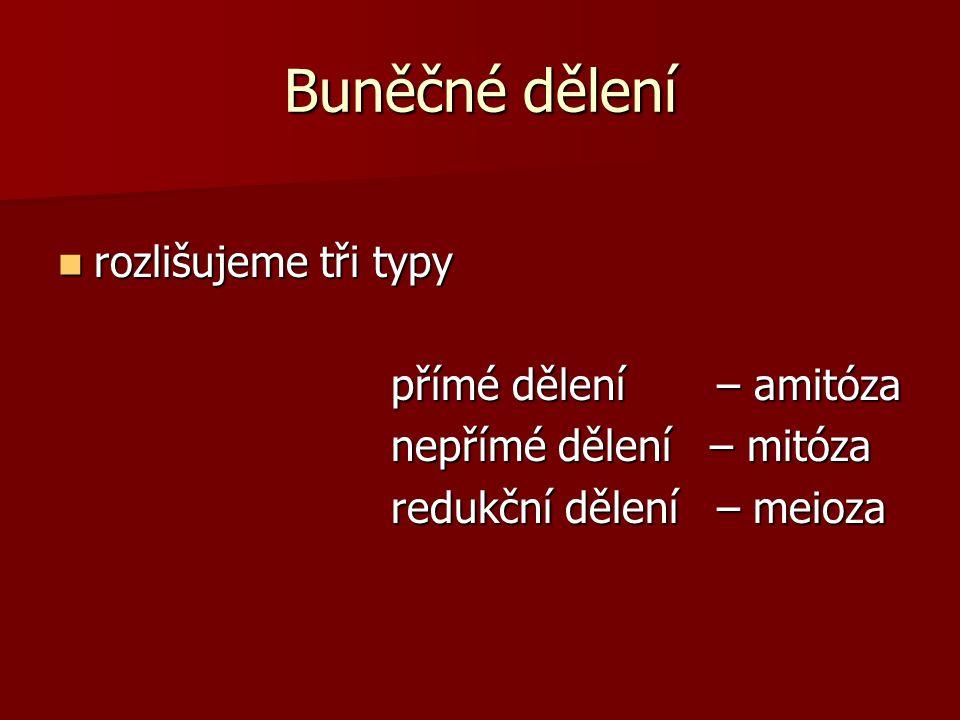 rozlišujeme tři typy rozlišujeme tři typy přímé dělení – amitóza přímé dělení – amitóza nepřímé dělení – mitóza nepřímé dělení – mitóza redukční dělen