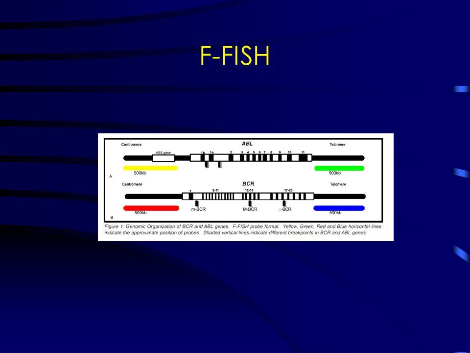 F-FISH