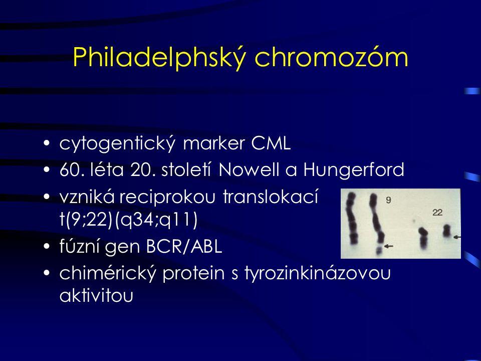 Philadelphský chromozóm cytogentický marker CML 60. léta 20. století Nowell a Hungerford vzniká reciprokou translokací t(9;22)(q34;q11) fúzní gen BCR/
