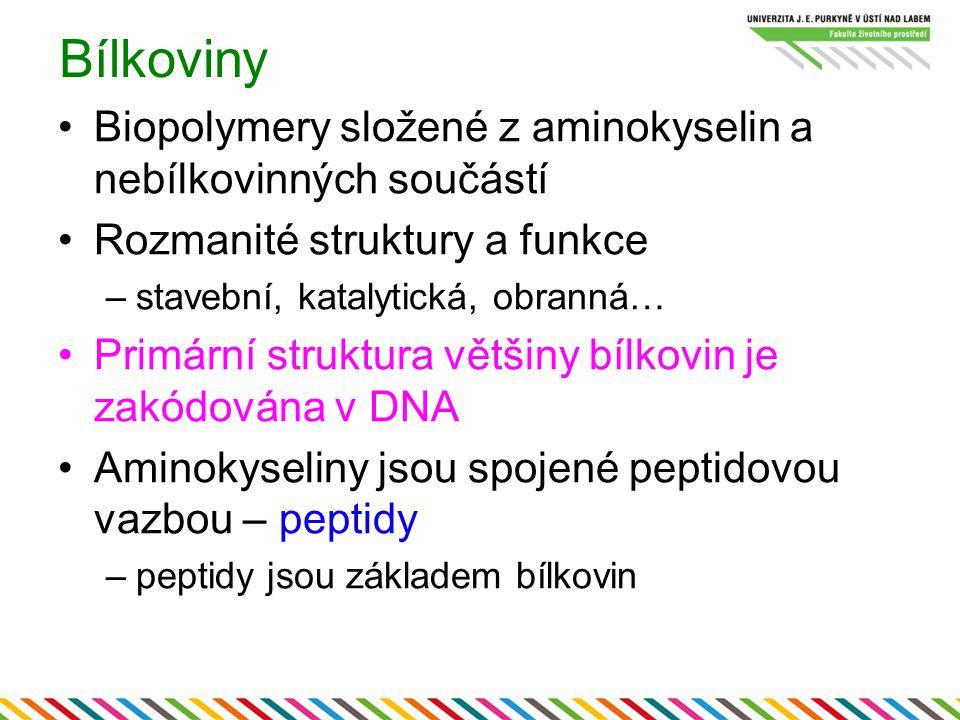 Lidské chromozómy (páry)