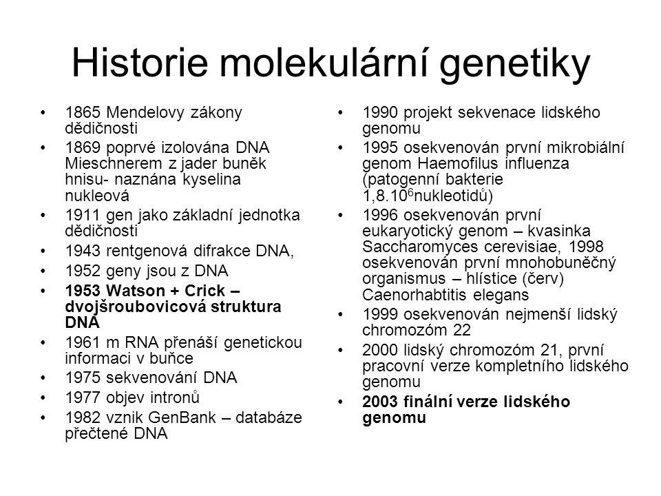 Historie molekulární genetiky 1865 Mendelovy zákony dědičnosti 1869 poprvé izolována DNA Mieschnerem z jader buněk hnisu- naznána kyselina nukleová 19