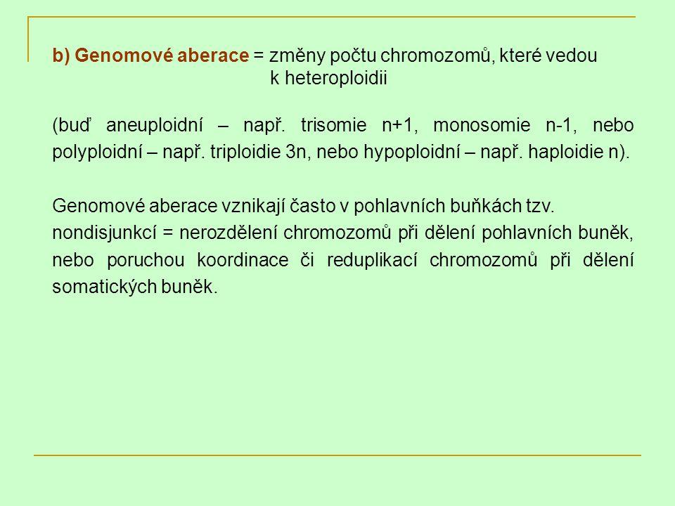 b) Genomové aberace = změny počtu chromozomů, které vedou k heteroploidii (buď aneuploidní – např. trisomie n+1, monosomie n-1, nebo polyploidní – nap
