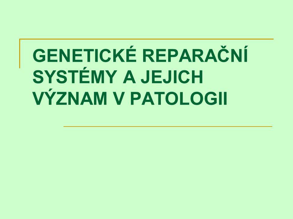 GENETICKÉ REPARAČNÍ SYSTÉMY A JEJICH VÝZNAM V PATOLOGII