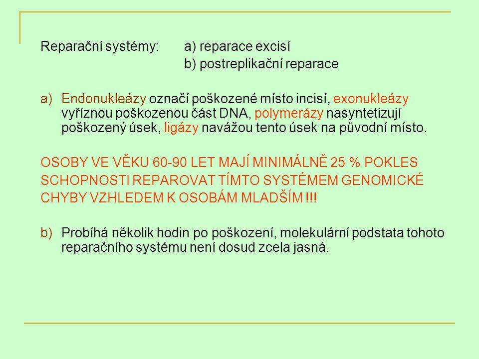 Reparační systémy:a) reparace excisí b) postreplikační reparace a)Endonukleázy označí poškozené místo incisí, exonukleázy vyříznou poškozenou část DNA
