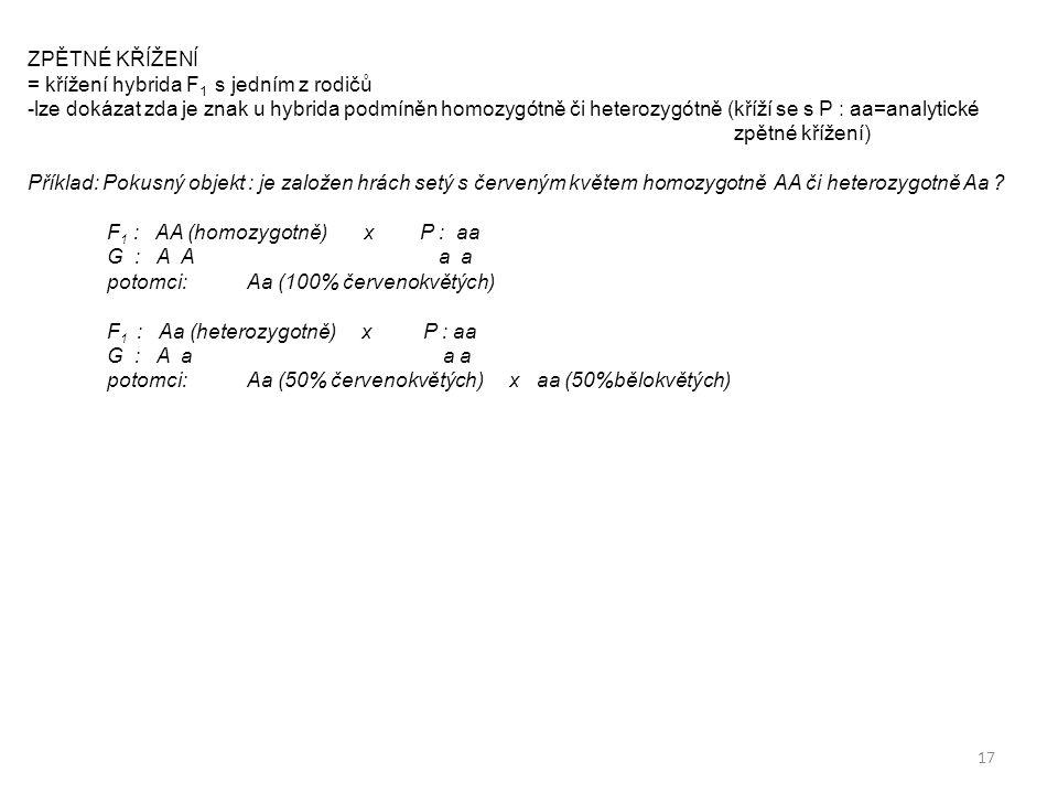 17 ZPĚTNÉ KŘÍŽENÍ = křížení hybrida F 1 s jedním z rodičů -lze dokázat zda je znak u hybrida podmíněn homozygótně či heterozygótně (kříží se s P : aa=