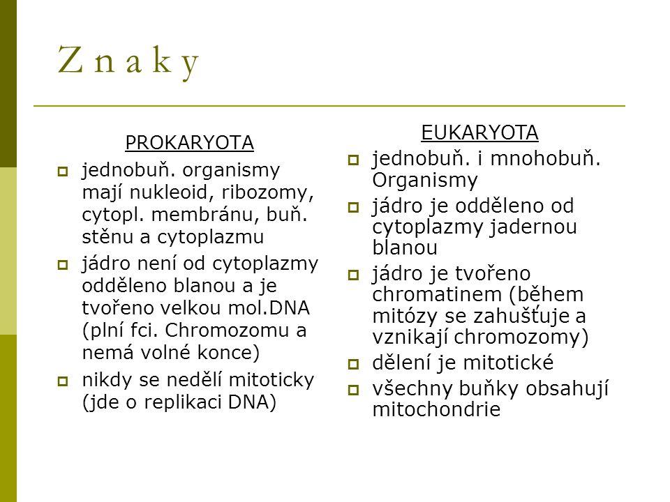 Z n a k y PROKARYOTA  jednobuň. organismy mají nukleoid, ribozomy, cytopl. membránu, buň. stěnu a cytoplazmu  jádro není od cytoplazmy odděleno blan