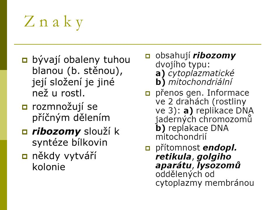  bývají obaleny tuhou blanou (b. stěnou), její složení je jiné než u rostl.  rozmnožují se příčným dělením  ribozomy slouží k syntéze bílkovin  ně