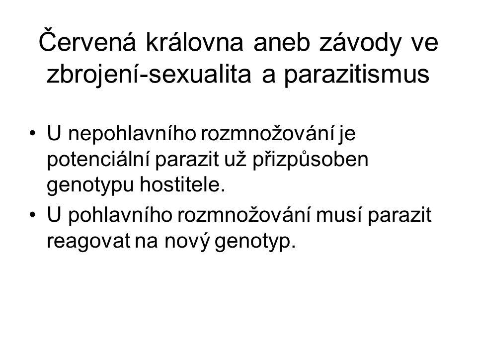 Červená královna aneb závody ve zbrojení-sexualita a parazitismus U nepohlavního rozmnožování je potenciální parazit už přizpůsoben genotypu hostitele