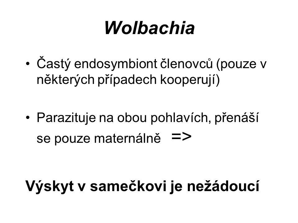 Wolbachia Častý endosymbiont členovců (pouze v některých případech kooperují) Parazituje na obou pohlavích, přenáší se pouze maternálně => Výskyt v sa