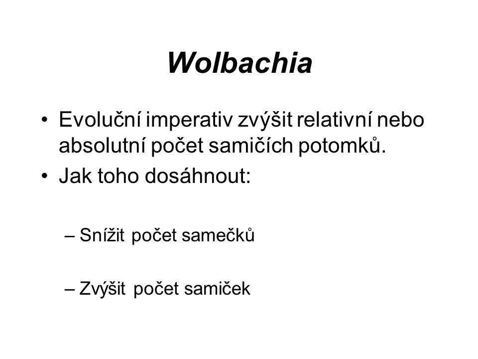 Wolbachia Evoluční imperativ zvýšit relativní nebo absolutní počet samičích potomků. Jak toho dosáhnout: –Snížit počet samečků –Zvýšit počet samiček