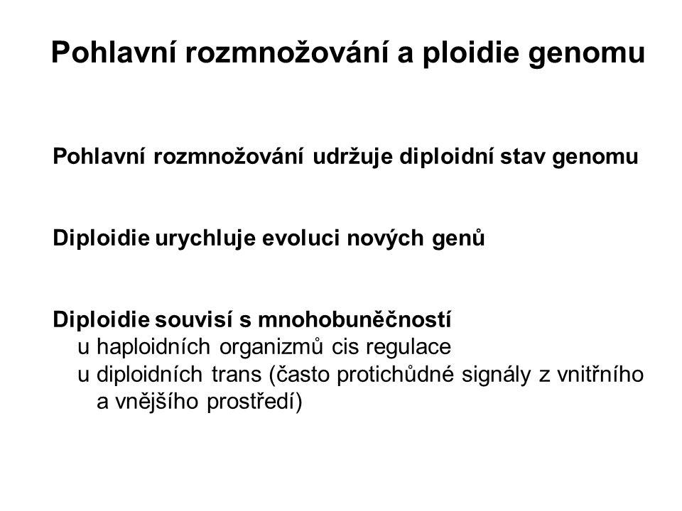 Pohlavní rozmnožování udržuje diploidní stav genomu Diploidie urychluje evoluci nových genů Diploidie souvisí s mnohobuněčností u haploidních organizm