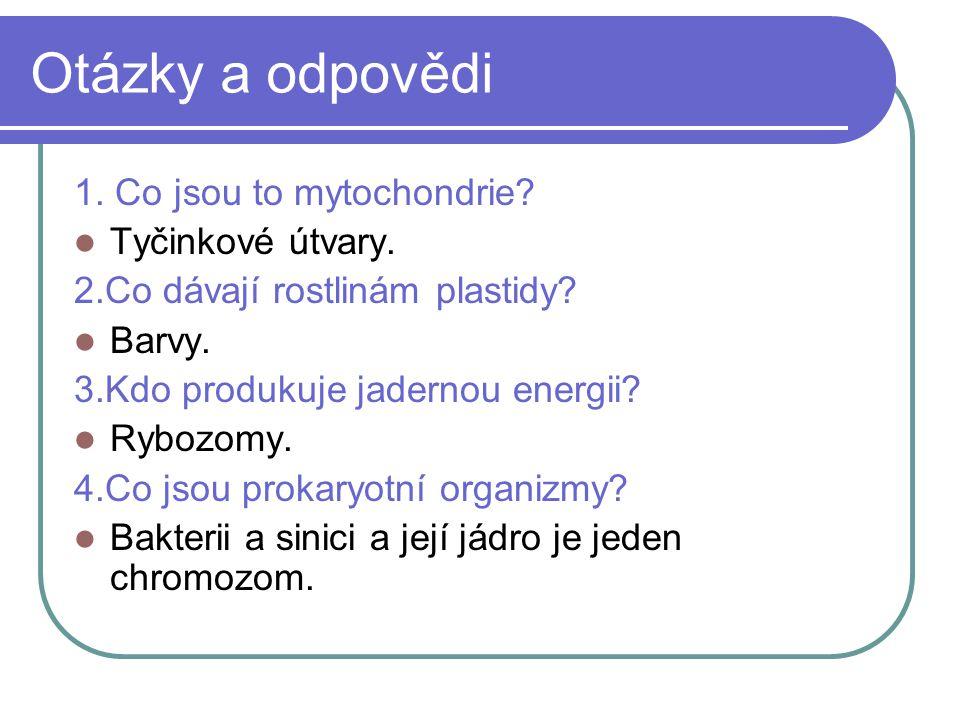 Otázky a odpovědi 1. Co jsou to mytochondrie. Tyčinkové útvary.