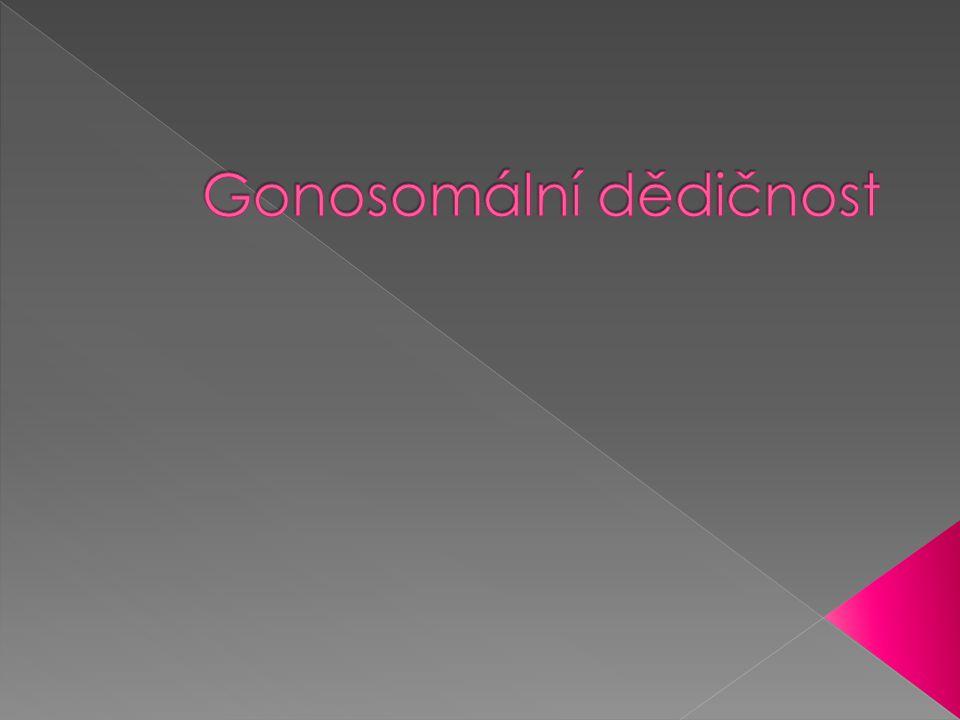  Dědičnost znaků, jejichž geny jsou umístěny na pohlavních chromozomech (v heterologní části chromozomu)