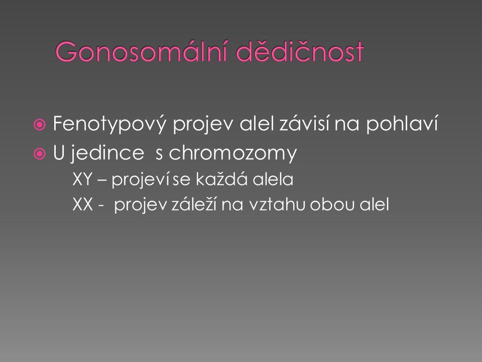  Fenotypový projev alel závisí na pohlaví  U jedince s chromozomy XY – projeví se každá alela XX - projev záleží na vztahu obou alel