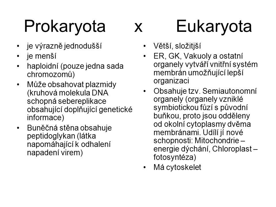 Prokaryota x Eukaryota je výrazně jednodušší je menší haploidní (pouze jedna sada chromozomů) Může obsahovat plazmidy (kruhová molekula DNA schopná sebereplikace obsahující doplňující genetické informace) Buněčná stěna obsahuje peptidoglykan (látka napomáhající k odhalení napadení virem) Větší, složitjší ER, GK, Vakuoly a ostatní organely vytváří vnitřní systém membrán umožňující lepší organizaci Obsahuje tzv.