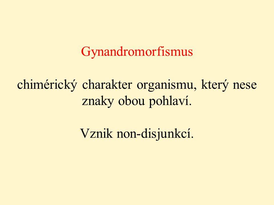 Gynandromorfismus chimérický charakter organismu, který nese znaky obou pohlaví. Vznik non-disjunkcí.
