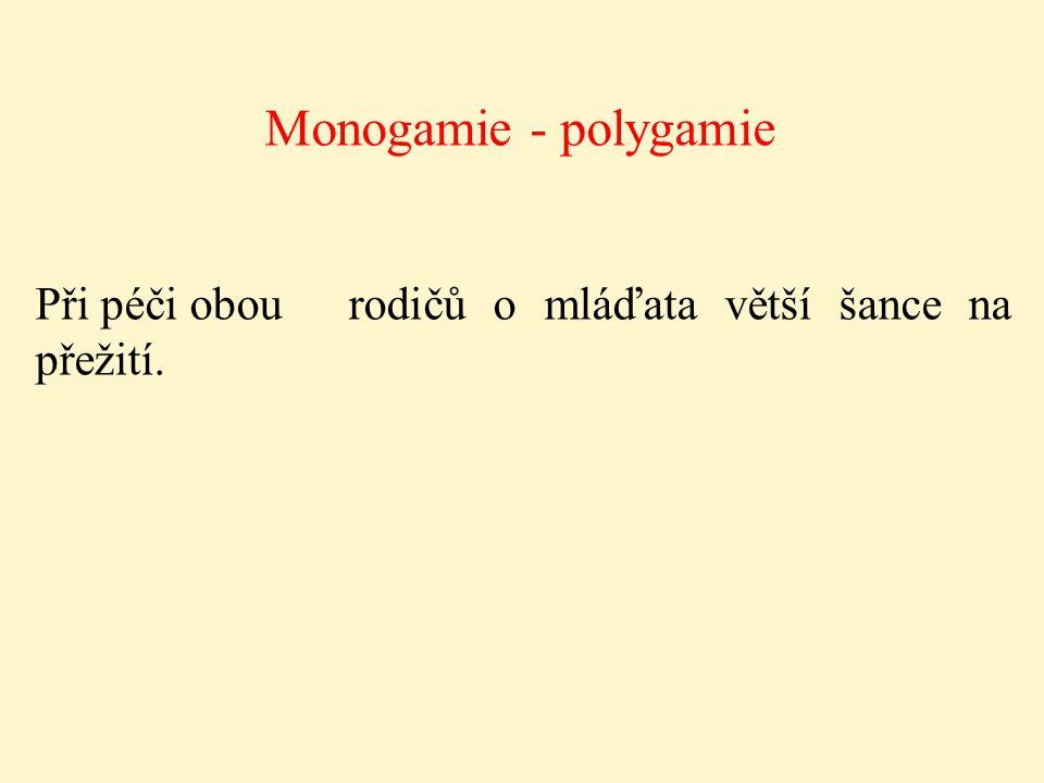 Monogamie - polygamie Při péči obourodičů o mláďata větší šance na přežití.