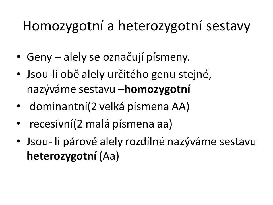 Homozygotní a heterozygotní sestavy Geny – alely se označují písmeny.