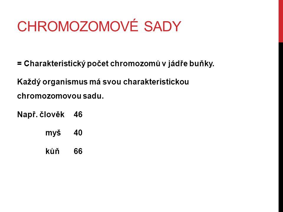 CHROMOZOMOVÉ SADY = Charakteristický počet chromozomů v jádře buňky.