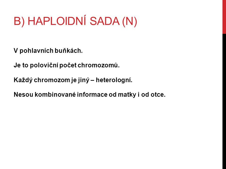 B) HAPLOIDNÍ SADA (N) V pohlavních buňkách.Je to poloviční počet chromozomů.