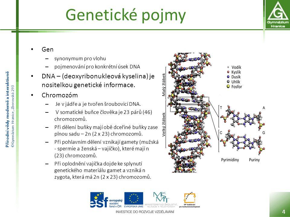 Přírodní vědy moderně a interaktivně ©Gymnázium Hranice, Zborovská 293 Genetické pojmy Gen – určuje vlastnosti organismu – znaky - (barva vlasů, velikost zubů, schopnost opalovat se, …) – Znaky mohou být v různých podobách – (oči mohou být modré, zelené, hnědé, …) – V buňce jsou geny určující konkrétní vlastnost (alely) vždy na obou chromozomech – Každá alela může mít kódovanou jinou vlastnost (například jedna pro krevní skupinu 0 a na druhém chromozomu pro A) 5