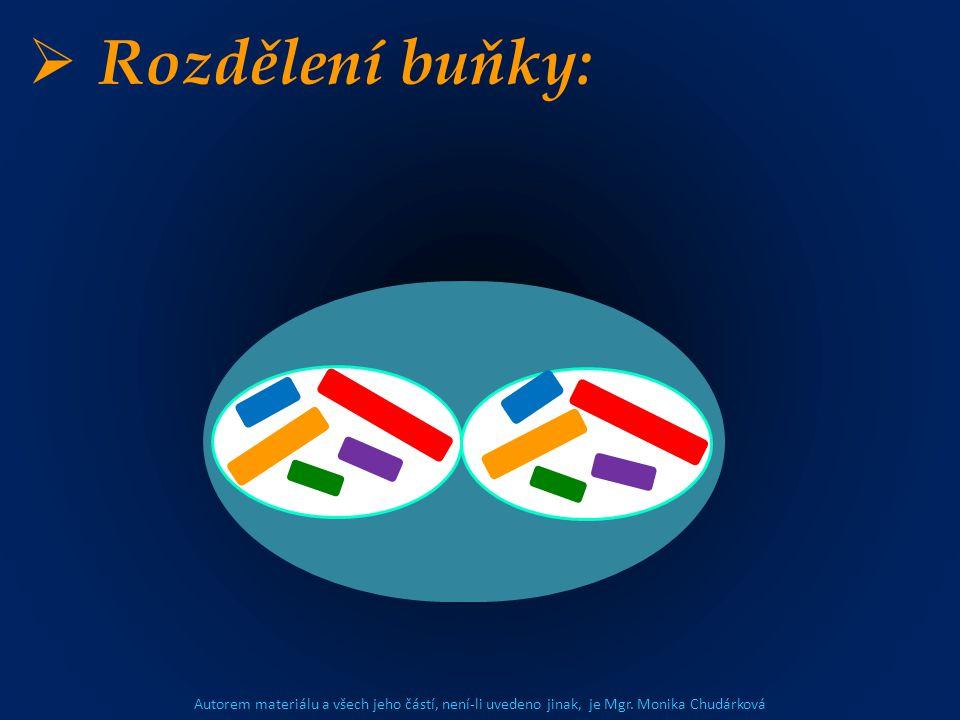 Autorem materiálu a všech jeho částí, není-li uvedeno jinak, je Mgr. Monika Chudárková  Rozdělení buňky: