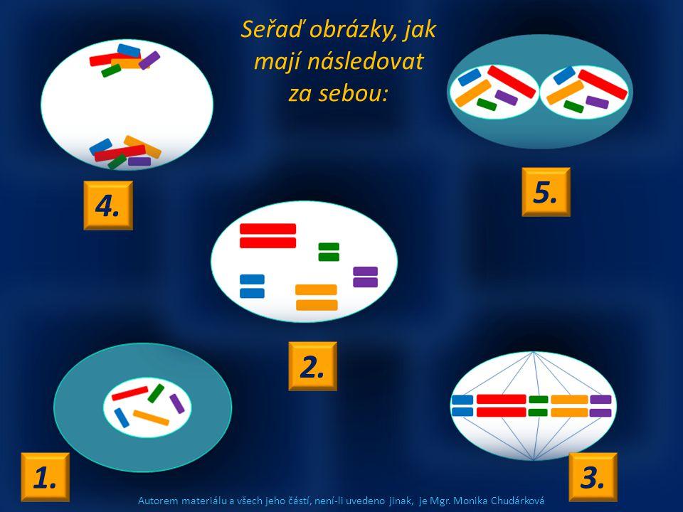 Autorem materiálu a všech jeho částí, není-li uvedeno jinak, je Mgr. Monika Chudárková Seřaď obrázky, jak mají následovat za sebou: 4. 1.3. 2. 5.