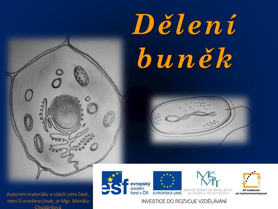 Dělení buněk Autorem materiálu a všech jeho částí, není-li uvedeno jinak, je Mgr. Monika Chudárková
