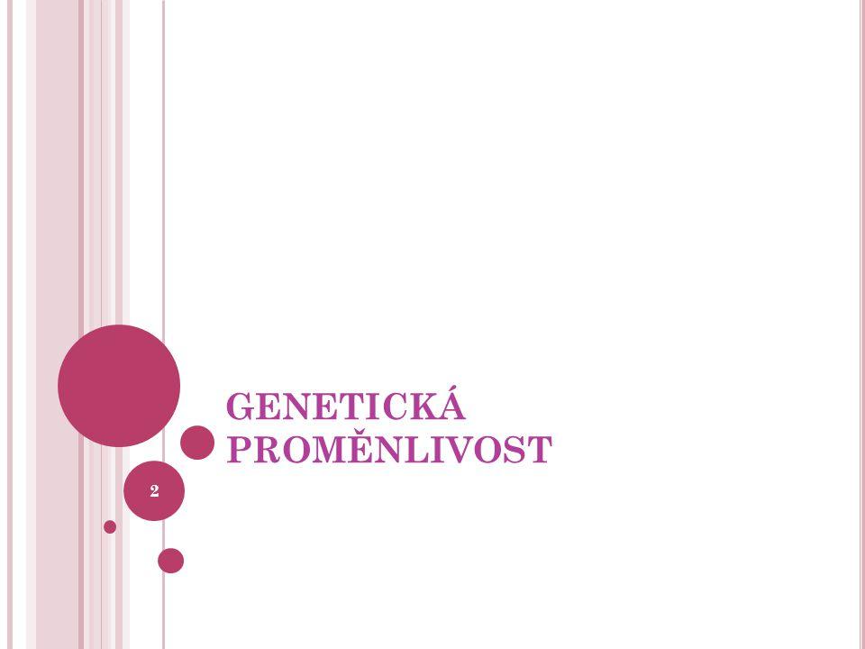 GENETICKÁ PROMĚNLIVOST 2